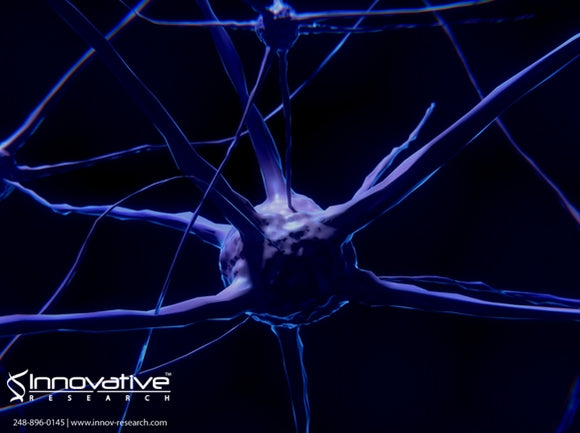 Multiple Sclerosis and the Myelin Sheaths Protecting Nerve Fibers