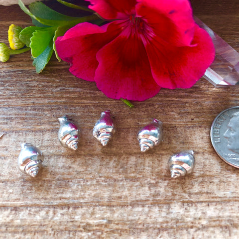 Mini conch shell Castings