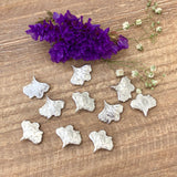 Ginkgo Castings - Small