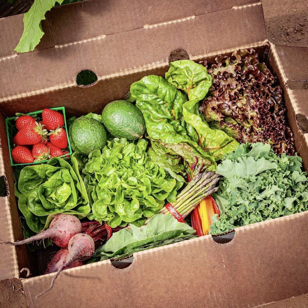 Donate a Farm Box