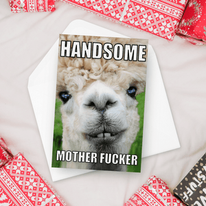 Handsome Mother Fucker Birthday Card