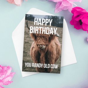 Happy Birthday You Randy Old Cow Birthday Card