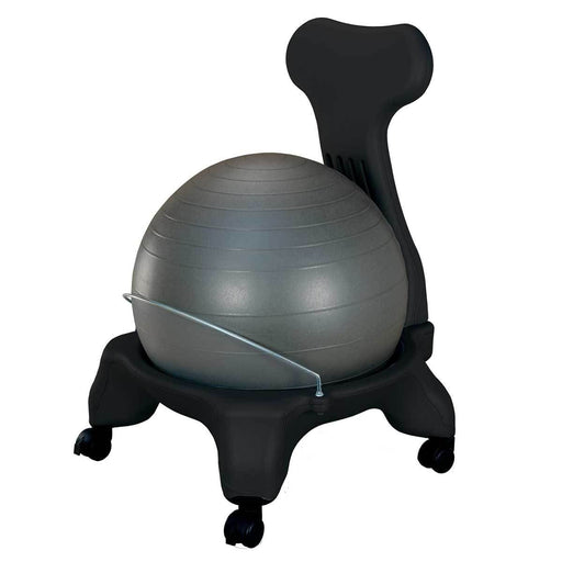 Ball Chair with Back Support