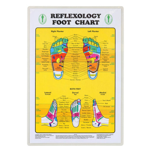 Foot Reflexology Chart Relaxus