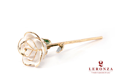 Leronza 24k Gold-Dipped Natural White Rose - Leronza
