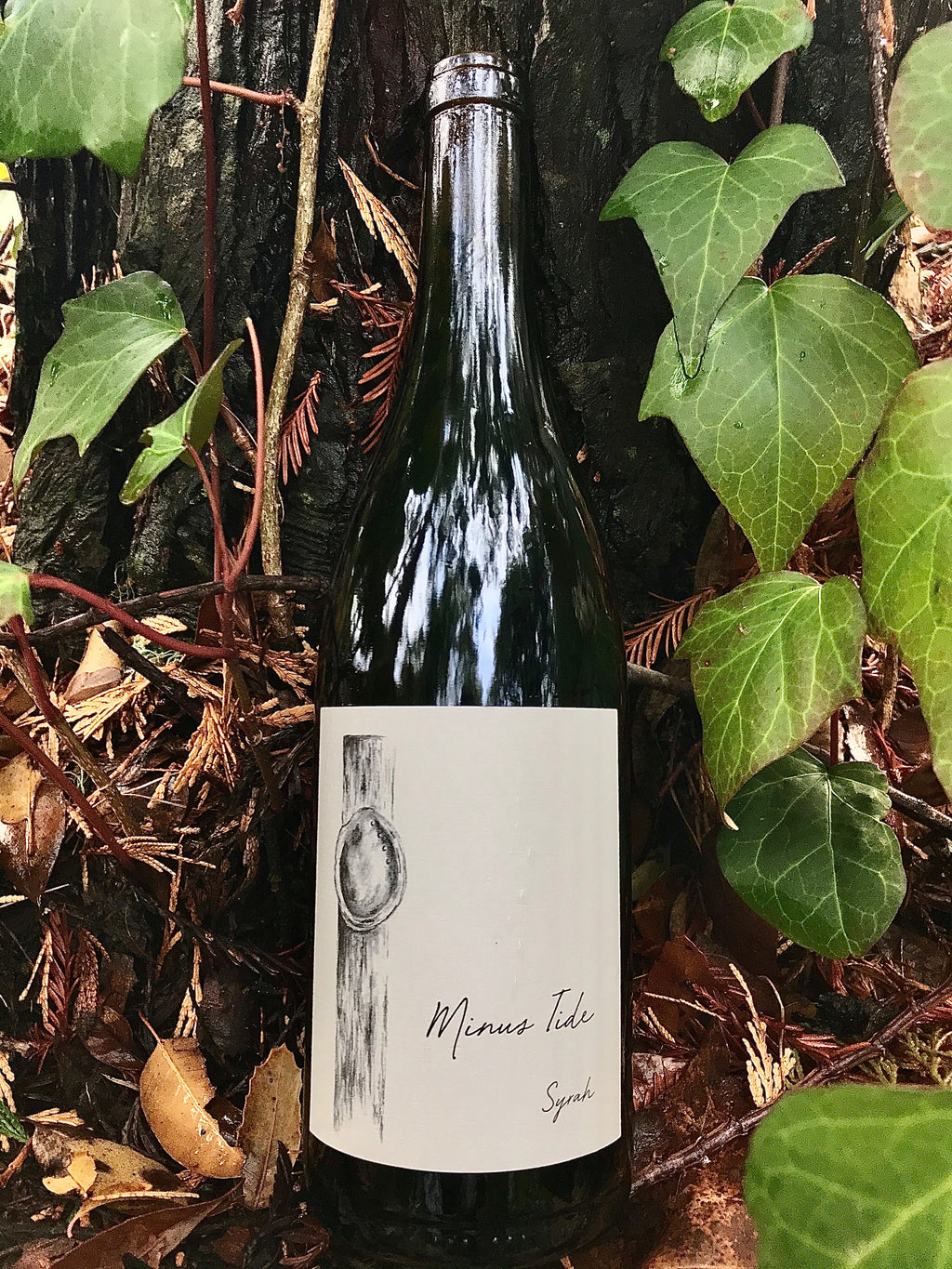 2018 Minus Tide Valenti Vineyard Syrah