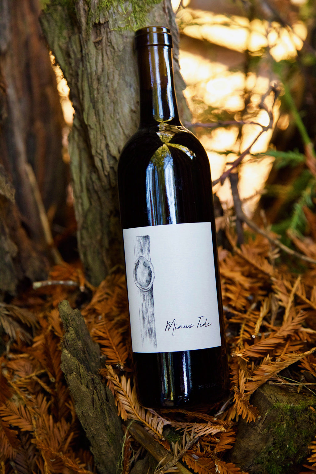 2015 Minus Tide Alder Springs Vineyard Malbec