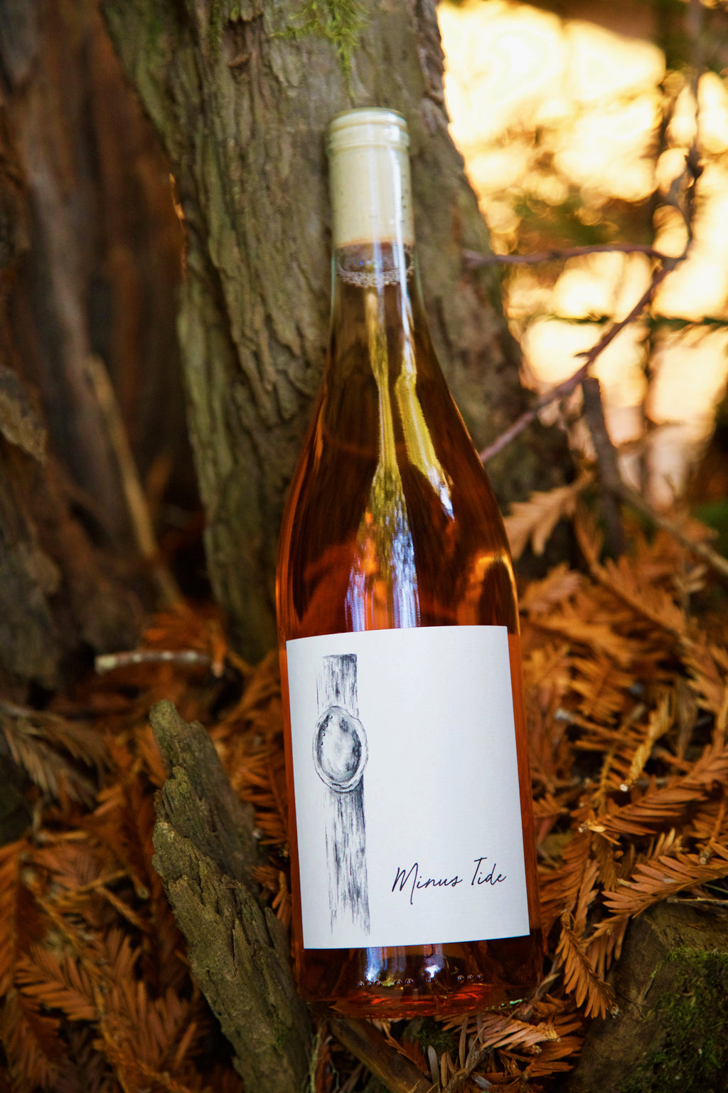 2019 Minus Tide Feliz Creek Vineyard Carignan Rosé