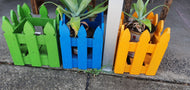 Colour Planter Box