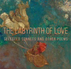 Labyrinth of Love cover