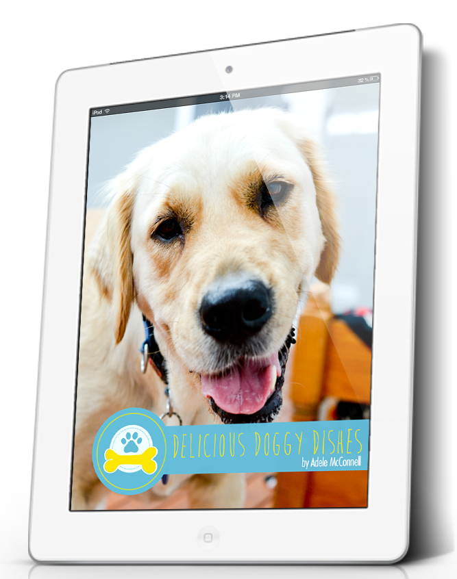 Delicious Doggy Dishes eBook