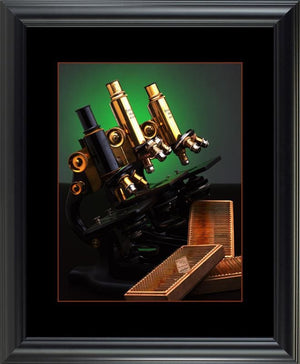 Microscopes of Brass - printed image