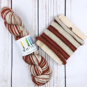 Coming To America - hand-dyed self-striping sock yarn