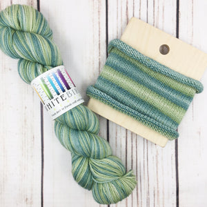 Roamin' Gnomial - hand-dyed self-striping sock yarn