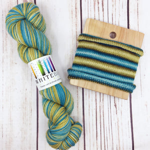Strange Women Distributing Swords- hand-dyed self-striping sock yarn
