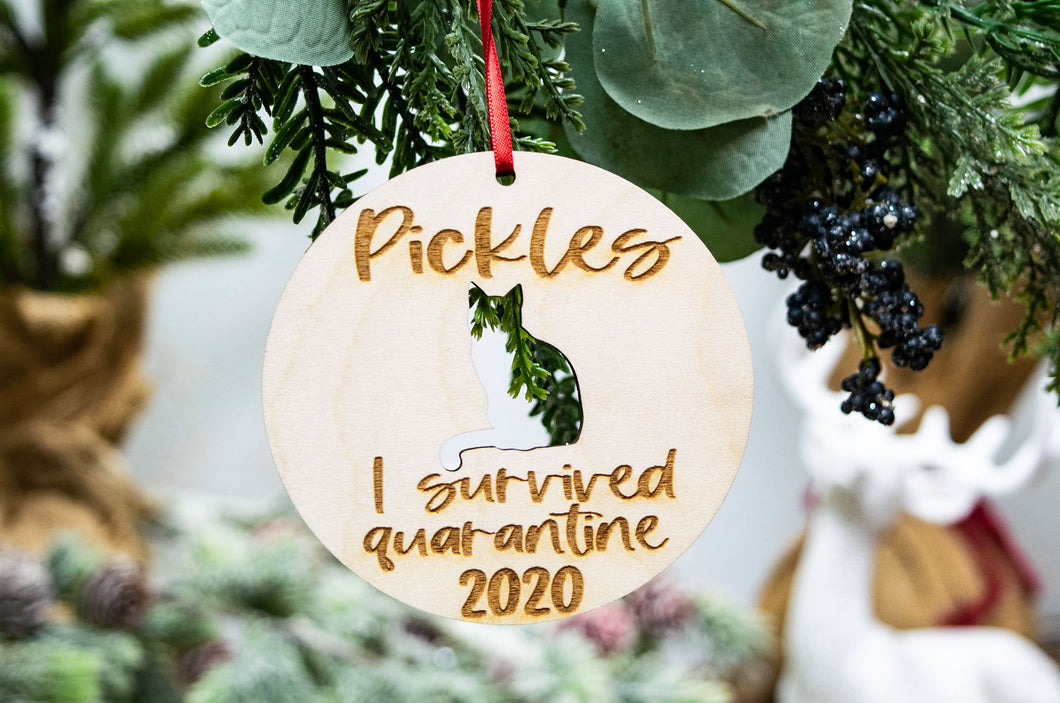 I Survived Quarantine Personalized Cat Ornament 2020 - Funny Cat Themed Gifts,
