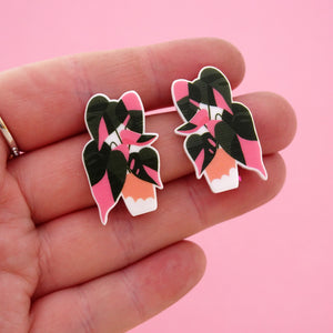 Pink Princess Pot Plant Statement Stud Earring - Timber & Cotton + Brook Gossen