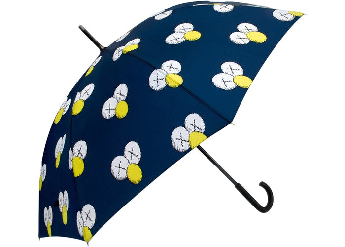 Kaws Umbrella