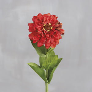 Red Zinnia Pick