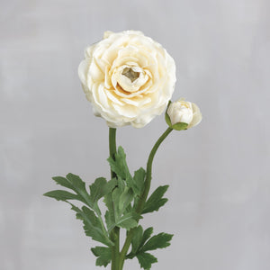 Cream Ranunculus Pick