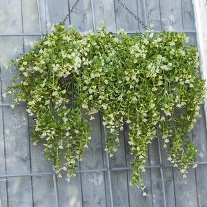 Boxwood and Berry Hanging Bush