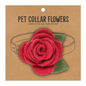 Small Pet Collar Flower - Raspberry