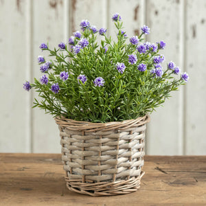 Wicker Potted Purple Flowering Plant
