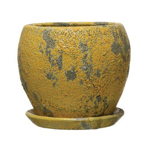Terra-cotta Planter w/ Saucer, Distressed Yellow Finish
