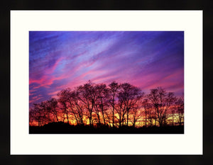 Framed Print - Last Light