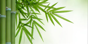 bamboo is natural and chemical free