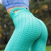 leggycozy Leggings [leggycozy] New Style Elastic High Waist Breathable Leggings