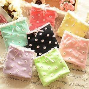 [leggycozy] Lovely Bow Knot Daisy Floral Pattern Cotton Panties