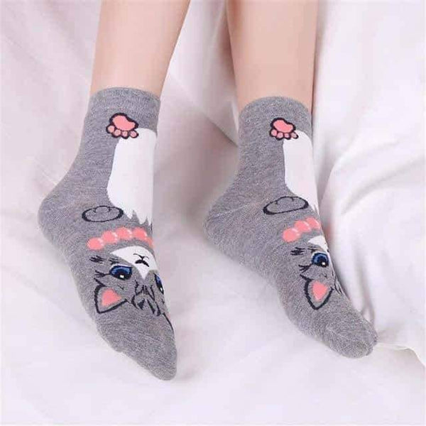 leggycozy socks [leggycozy] Animation Character Cute Cat Socks