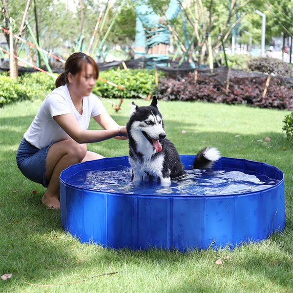 Animal Folding Pet Swimming Pool Ultra Strong For Dogs / Cats