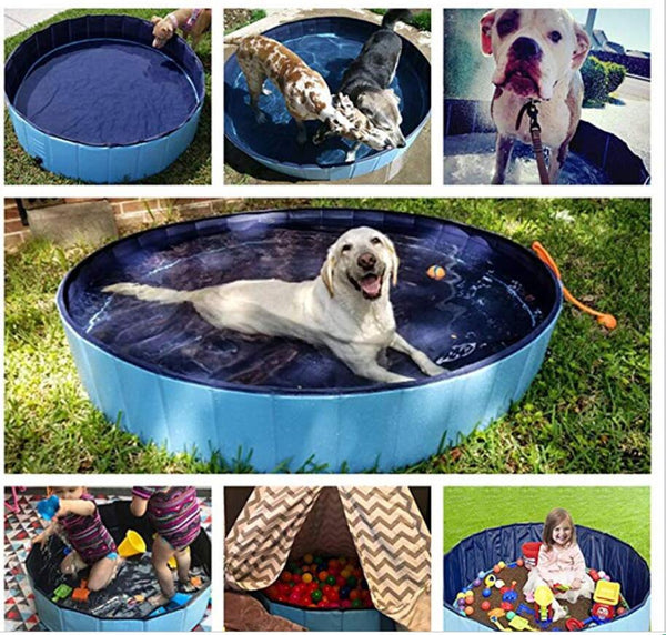 Foldable Dog Pool Pawfect for Summer!