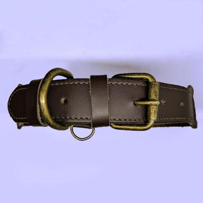 AMOR Handmade Dog Collar Buckle and Leather