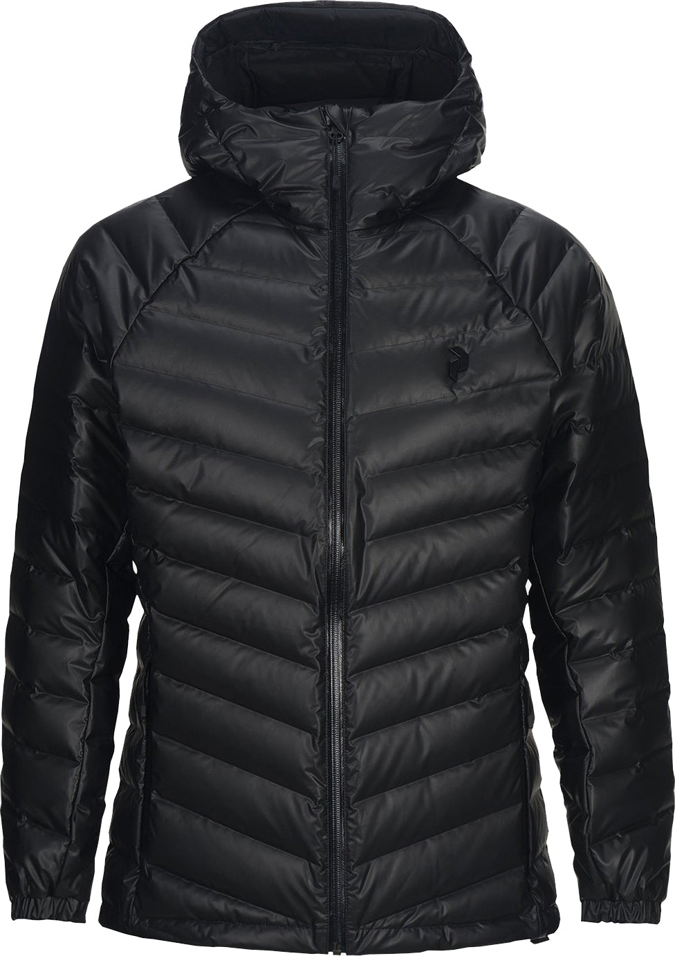 4d81950f2 Down Dry Frost Hooded Jacket - Men's