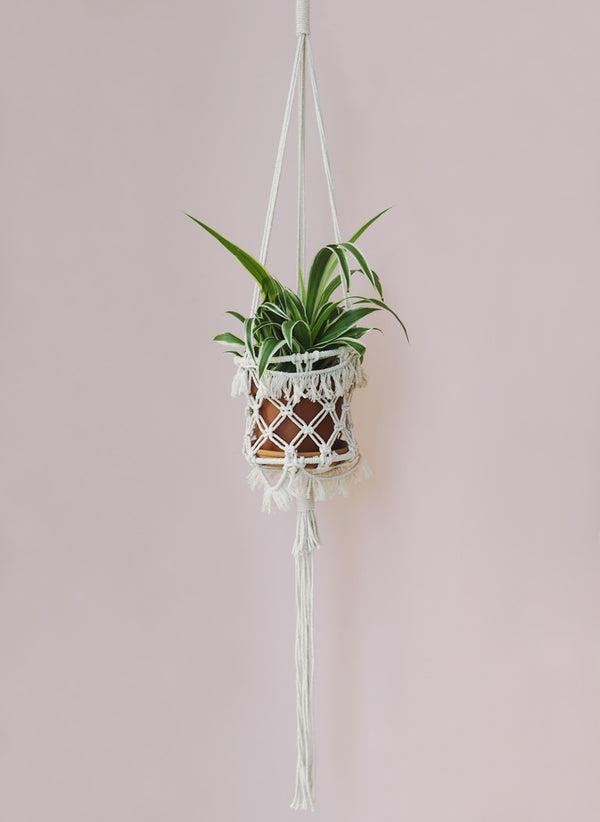 Macrame Pot Holders