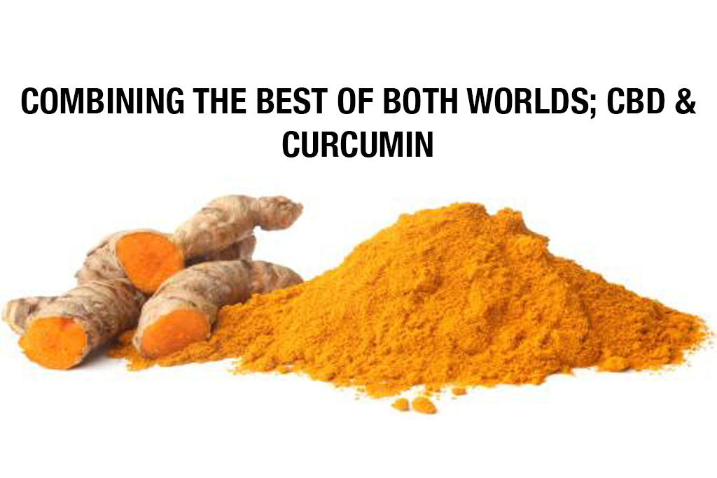 Why Curcumin & CBD is the Best Combo