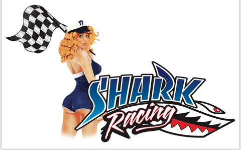 Shark Racing Decal Pinup🔥🏁💋