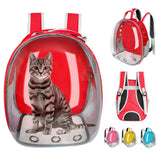 Cats Box Cage Small Dog Pet Travel Carrier Handbag