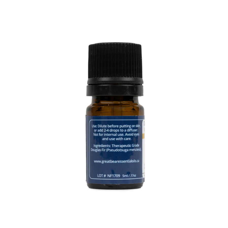 Douglas Fir Essential Oil - Great Bear Rainforest Essential Oils