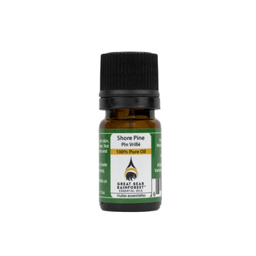 Shore Pine Essential Oil - Great Bear Rainforest Essential Oils