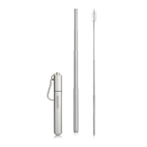 extended Silver telescopic straw, brush and carry case
