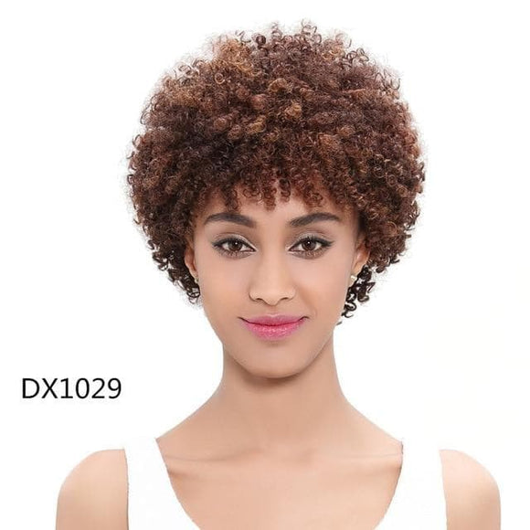 Sexy Afro Kinky Curly Remy Ombre Hair Wig - briskeys-deals
