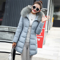 Winter Womens Parkas Coat hooded jacket Jacket, Winter Coat, Winter Jackets, Womens Coat, Womens Department