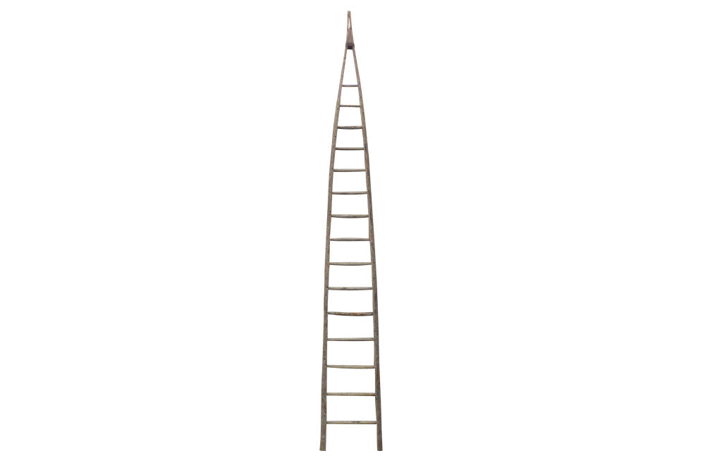 TALL FRENCH ORCHARD LADDER