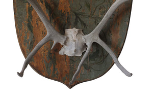 DECORATIVE ANTLER TROPHY