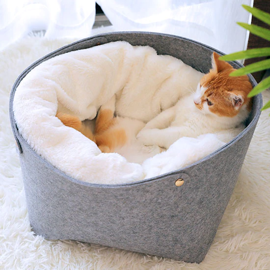 Comfortable Double-Layer Cat Bed