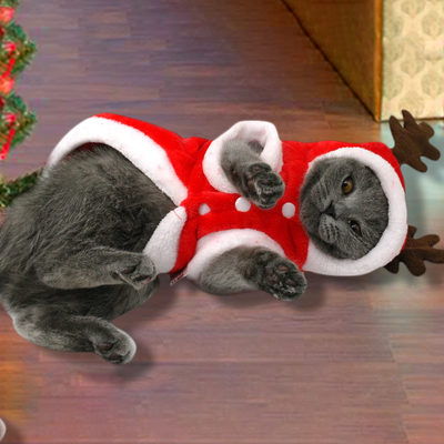 Christmas Dog/Cat Costume